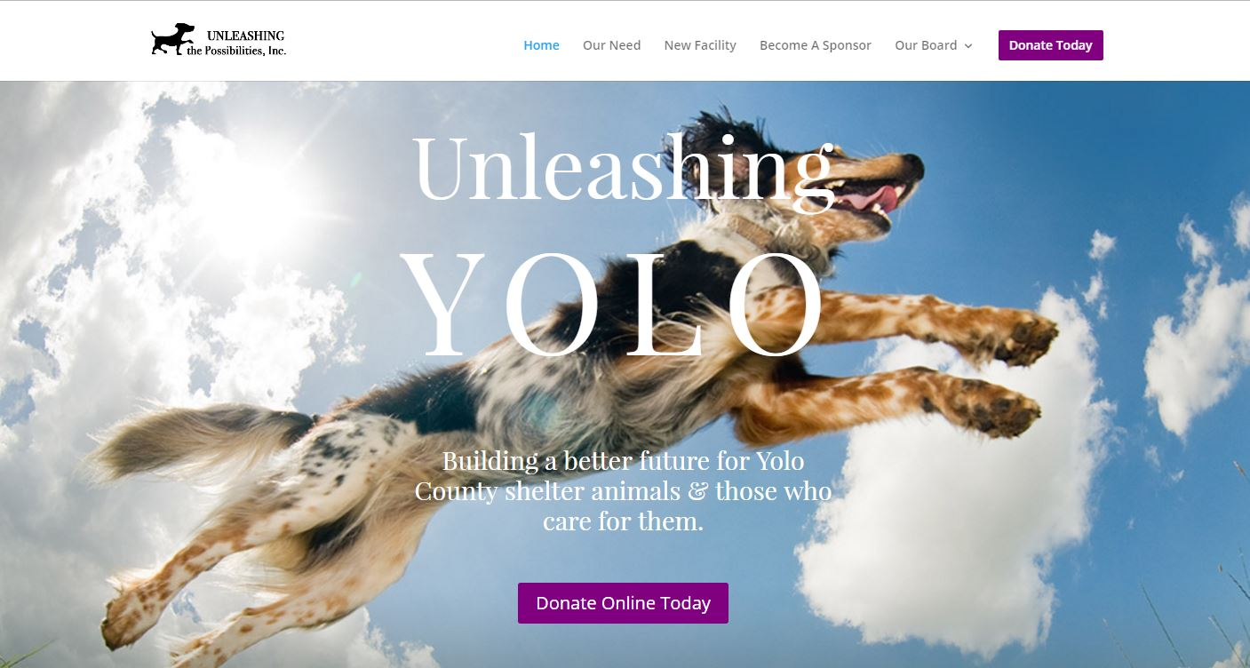 Unleashing the Possibilities, Inc. Website
